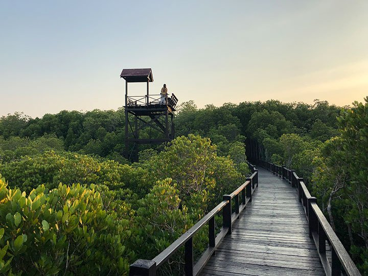 Pranburi Forest Park